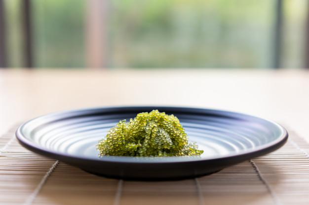 ชวนลิ้มรสอาหารญี่ปุ่นจากความรักของแม่ ที่ร้าน Ootoya